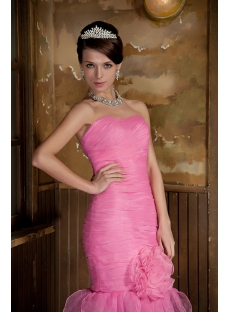 images/201305/small/Organza-Pink-Long-Mermaid-2012-Prom-Gown-GG1018-1236-s-1-1368270455.jpg