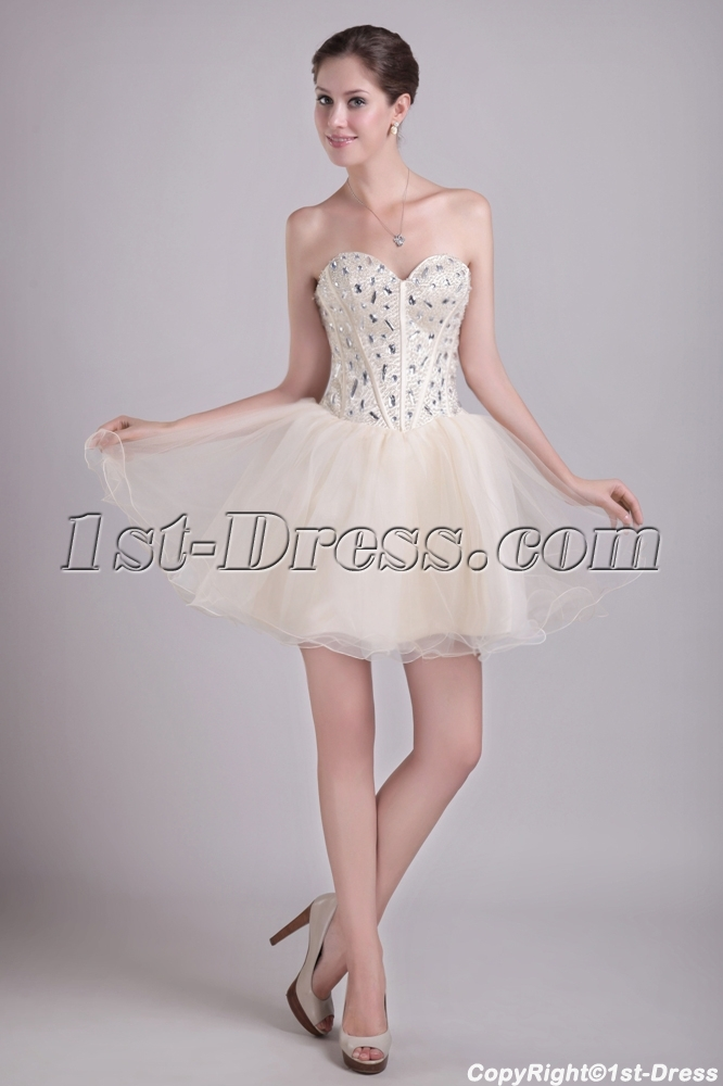 636927e70a8 Champagne Short Super Sweet 16 Dresses 0960 (Free Shipping)