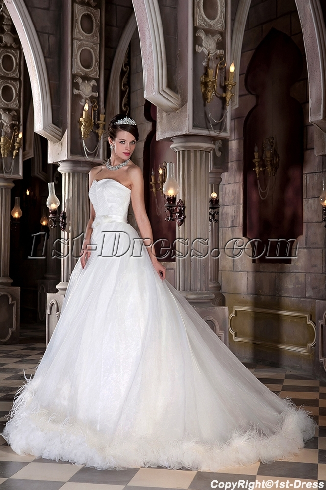 http://www.1st-dress.com/images/201305/source/New-Arrival-Beautiful-Ostrich-Feather-Bridal-Ball-Gown-2013-GG1033-1251-b-1-1368632757.JPG