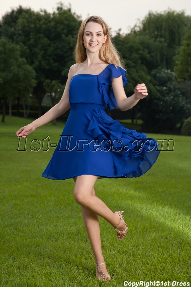 images/201305/big/Sweet-Royal-Chiffon-Cocktail-Dress-One-Shoulder-IMG_8444-1164-b-1-1367657243.jpg
