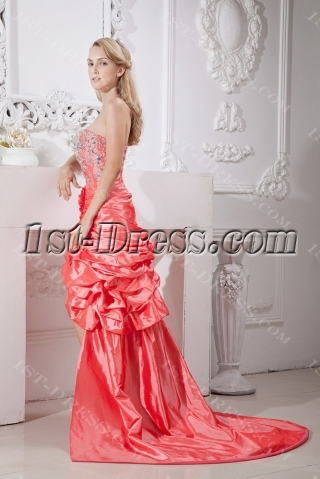 2013 Best Quinceanera Dress with Train