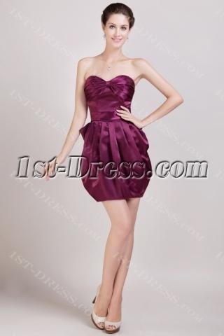 2013 Grape Graduation Dresses Short Discount