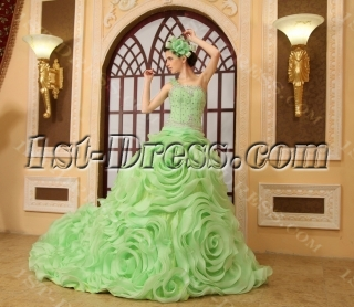 Ball-Gown One-Shoulder Floor-Length Organza Quinceanera Dress H-141