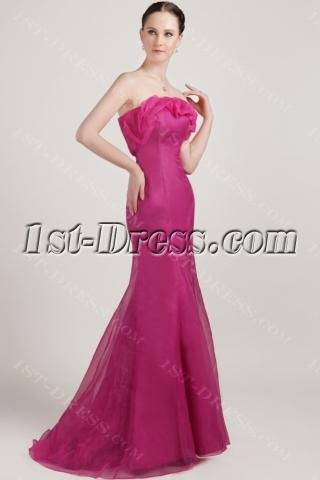 Long Hot Pink Sheath Pretty Prom Dress