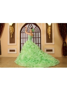 Ball-Gown One-Shoulder Floor-Length Organza Quinceanera Dress H-141