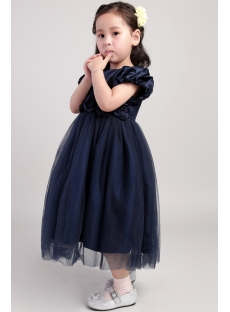 Navy Blue Princess Flower Girl Dresses 2002