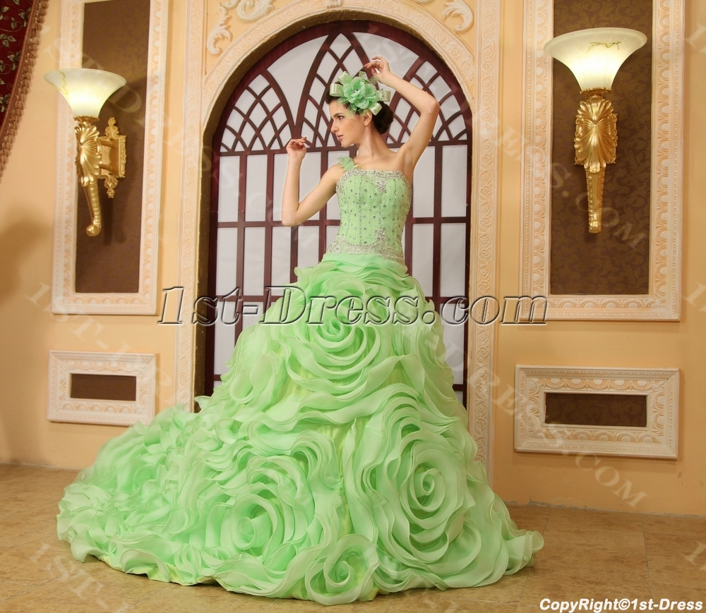 images/201306/big/Ball-Gown-One-Shoulder-Floor-Length-Organza-Quinceanera-Dress-H-141-2009-b-1-1371763110.jpg