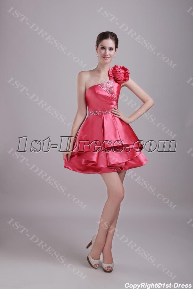 images/201306/big/Charming-Short-One-Shoulder-Graduation-Dress-with-Floral-1275-1519-b-1-1370196111.jpg