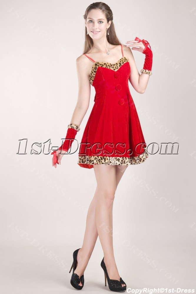 images/201306/big/Cute-Red-Velvet-Christmas-Party-Dress-2012-with-Fur-1799-b-1-1370809865.jpg