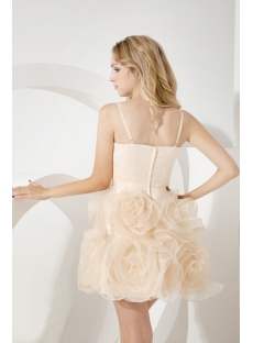 Champagne Fancy Short Sweet Sixteen Gown