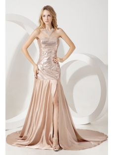 Champagne Simple Elegant Celebrity Dress 1st Dress Com