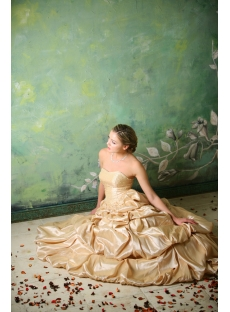 Champagne Taffeta Long Cheap Quinceanera Gown