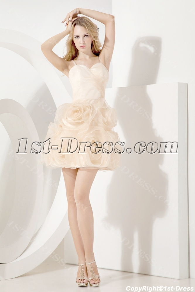 images/201307/big/Champagne-Fancy-Short-Sweet-Sixteen-Gown-2288-b-1-1373895682.jpg