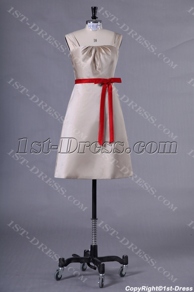 images/201307/big/Champagne-Short-Homecoming-Dress-with-Red-Sash-2402-b-1-1374597476.jpg