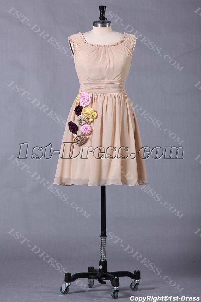 images/201307/big/Champagne-Short-Junior-Prom-Dress-for-Summer-2432-b-1-1374748315.jpg