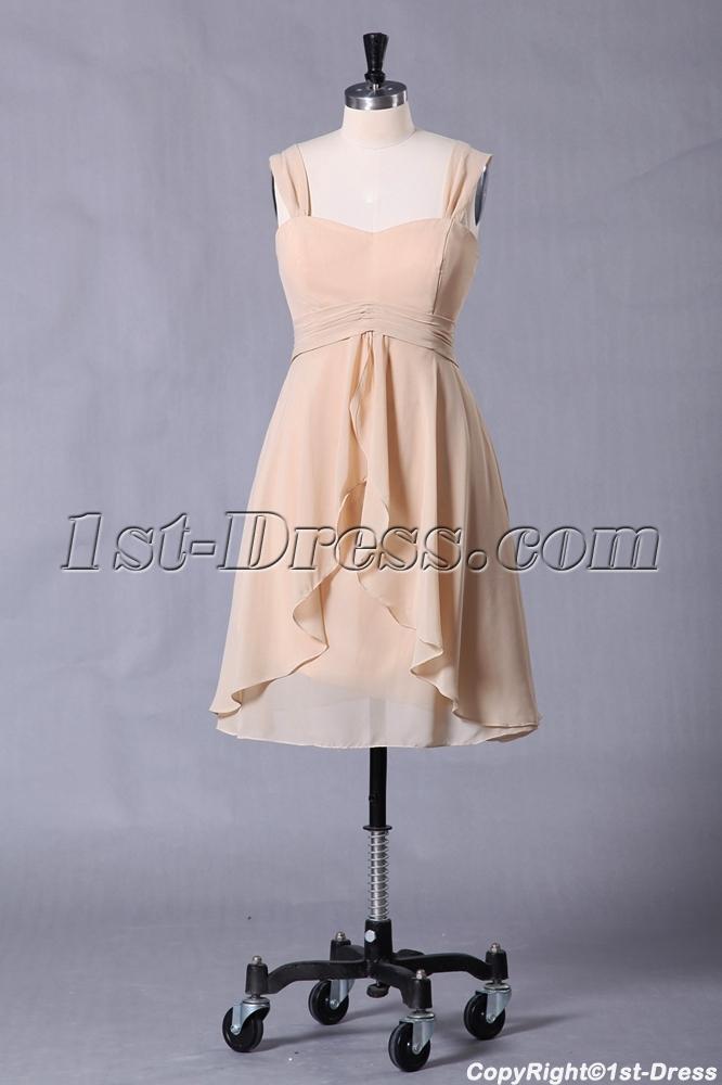 images/201307/big/Elegant-Champagne-Short-Graduation-Dress-for-Summer-2439-b-1-1374830268.jpg