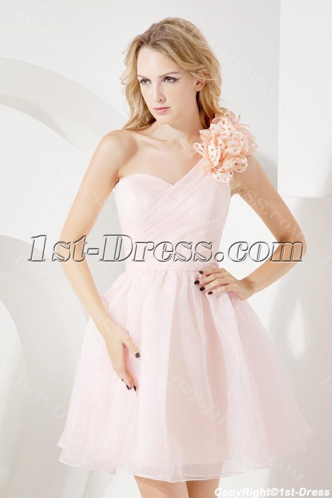 images/201307/big/Lovely-Pink-Short-One-Shoulder-Cocktail-Dress-2300-b-1-1373963180.jpg