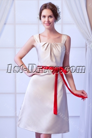 Champagne Short Inexpensive Bridesmaid Dress with Red Sash