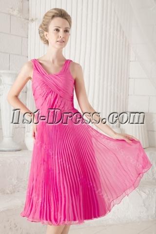 Pleats Simple Fuchsia Homecoming Dress