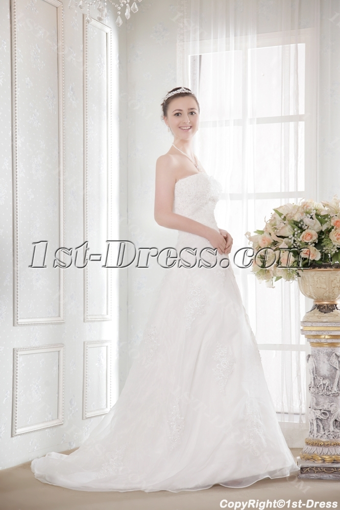 images/201308/big/Ivory-Organza-A-line-Cheap-Plus-Size-Bridal-Gowns-2517-b-1-1375431626.jpg