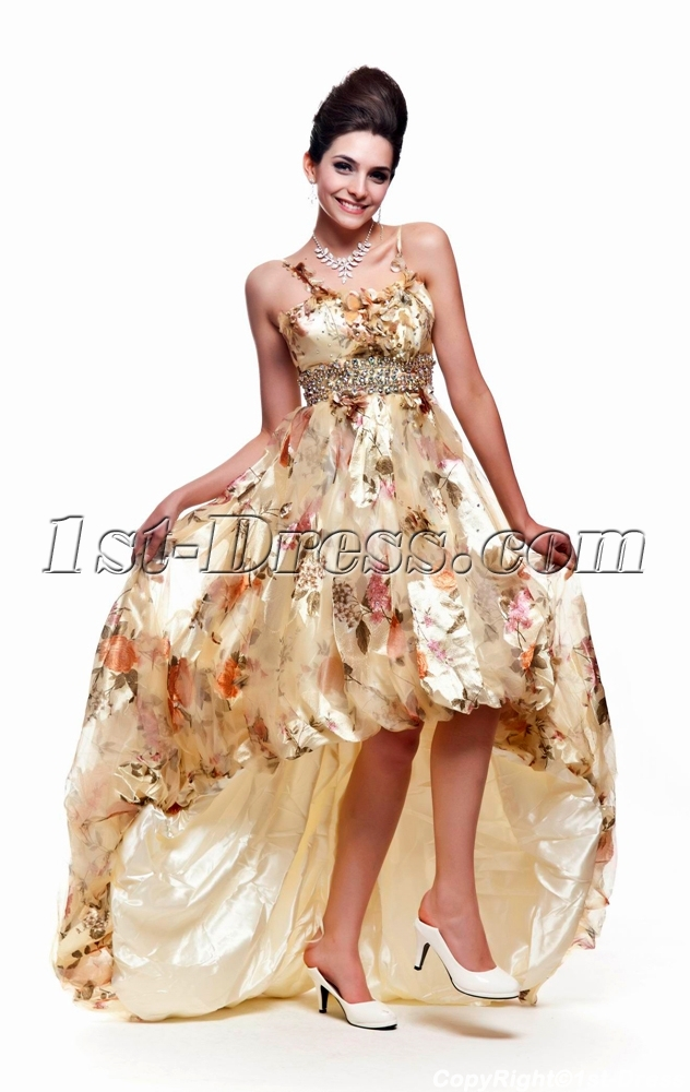 images/201308/big/Printed-Flower-2011-Prom-Dress-with-High-low-Hem-2643-b-1-1375960380.jpg