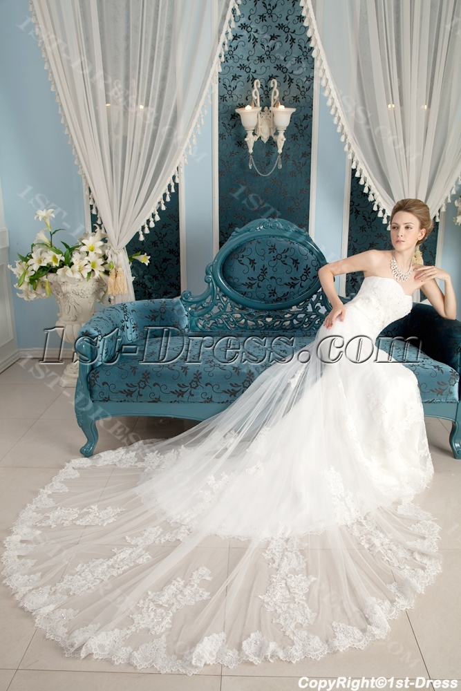 Strapless Fabulous Lace Bridal Gowns