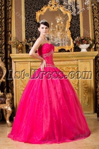 2012 Fuchsia Bat Mitzvah Ball Gown Dress