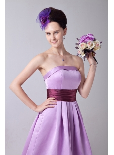 images/201309/small/Exquisite-Strapless-Lavender-Short-Junior-Bridesmaid-Gowns-2924-s-1-1378909858.jpg