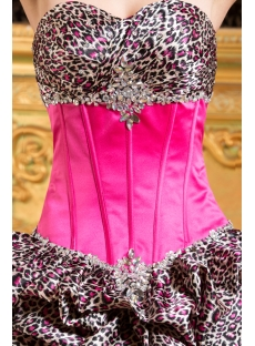 Hot Pink Leopard Formal Quinceanera Dress With Train 1st