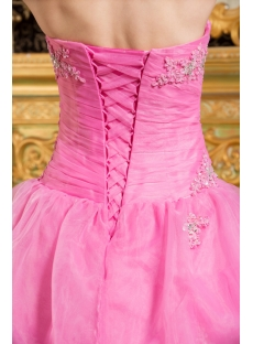 images/201309/small/Most-Popular-Pink-Organza-2012-Quinceanera-Dress-with-Jacket-2810-s-1-1378286847.jpg