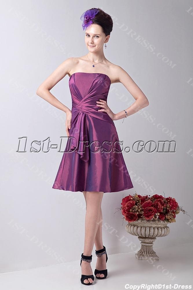 images/201309/big/Fuchsia-Chic-Junior-Bridesmaid-Dress-with-Strapless-2922-b-1-1378908377.jpg