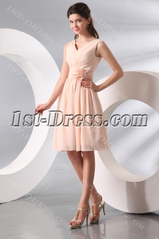 Vintage Chiffon V-neckline Short Junior Bridesmaid Gown