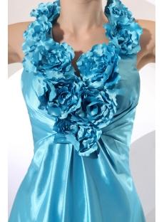 images/201310/small/Aqua-Flowers-Long-Halter-Evening-Dress-3278-s-1-1383042542.jpg