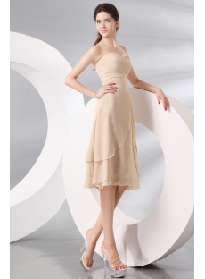 Champagne Tea Length Short Formal Party Dress