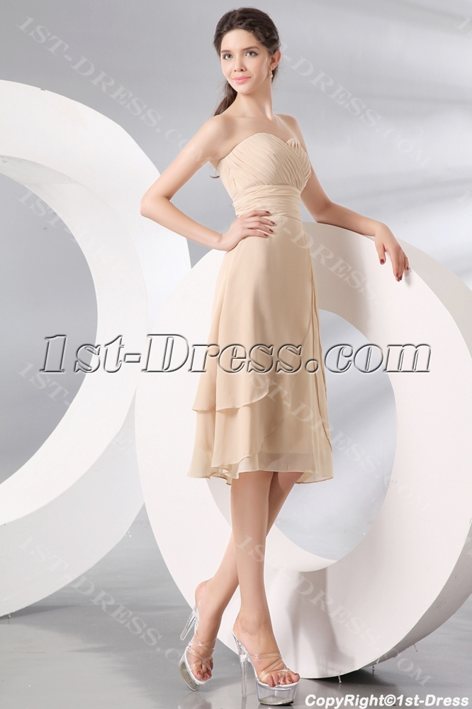 Champagne Tea Length Short Formal Party Dress1st Dress