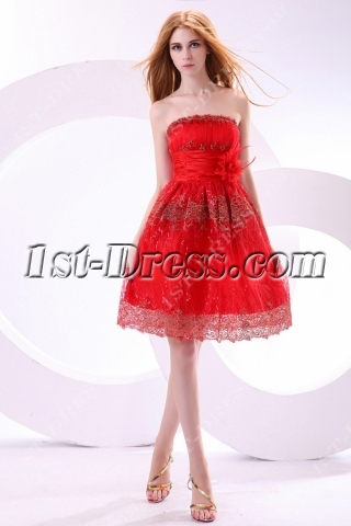 Charming Red Puffy Embroidery Sweet 16 Dress