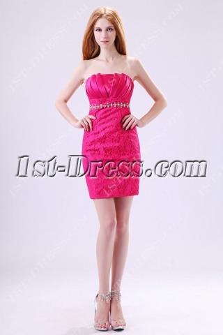 Hot Pink Mini Homecoming Dresses 2013 Cheap