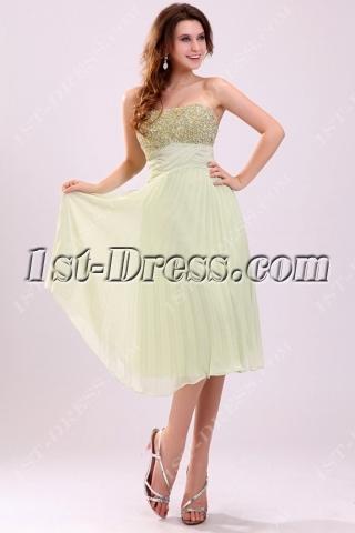 Pretty Sage Beaded Chiffon Plus Size Prom Dress