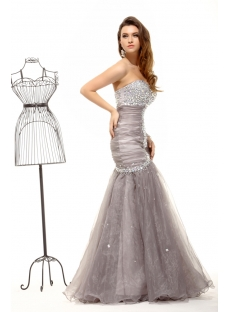 images/201311/small/Luxurious-Pretty-Gray-Silver-Mermaid-Evening-Dress-2014-3666-s-1-1385809062.jpg