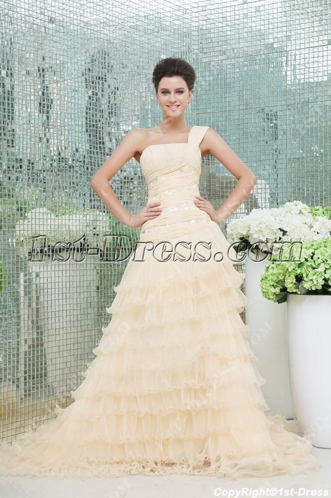 images/201311/big/Elegant-Champagne-One-Shoulder-Wedding-Dress-3584-b-1-1384777513.jpg
