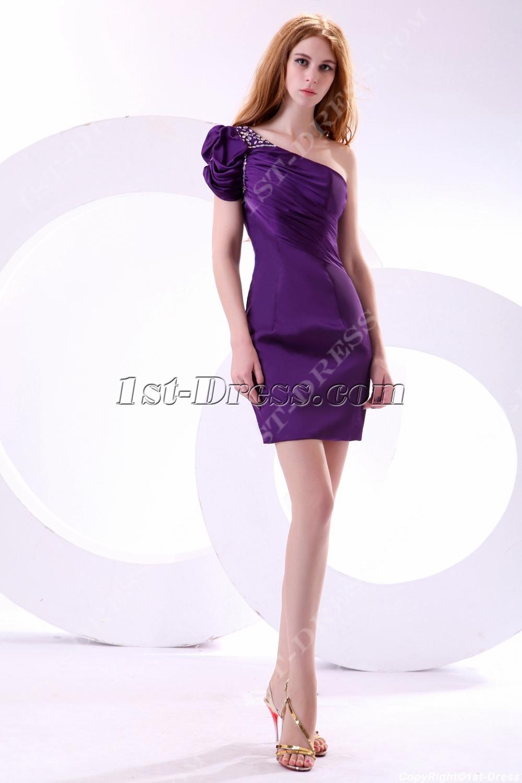 images/201311/big/Purple-Trendiest-Club-Dresses-with-Cap-Sleeves-3471-b-1-1384009187.jpg