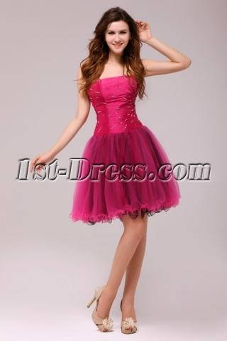 Fuchsia and Black Gorgeous Junior Prom Dresses Short 2013