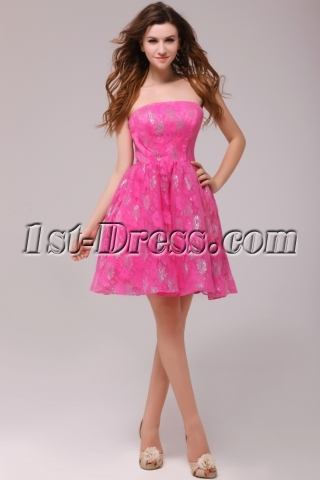 Hot Pink Short Lace Homecoming Party Dresses Cheap