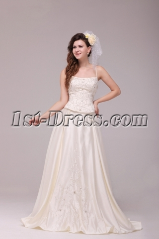 Pretty Casual Embroidery Plus Size Bridal Gowns with Corset