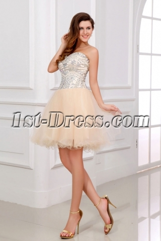 Pretty Puffy Champagne Cocktail Dresses