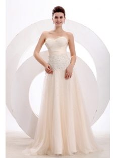 Champagne Classy A-line Long Prom Dress 2014