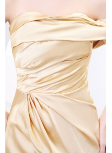 images/201312/small/Champagne-Classy-Evening-Dresses-with-One-Shoulder-3889-s-1-1388055625.jpg