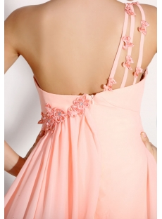 images/201312/small/Delicate-Pink-One-Shoulder-Full-Figure-Formal-Party-Dress-3679-s-1-1386147475.jpg