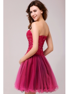images/201312/small/Fuchsia-and-Black-Gorgeous-Junior-Prom-Dresses-Short-2013-3803-s-1-1387362978.jpg