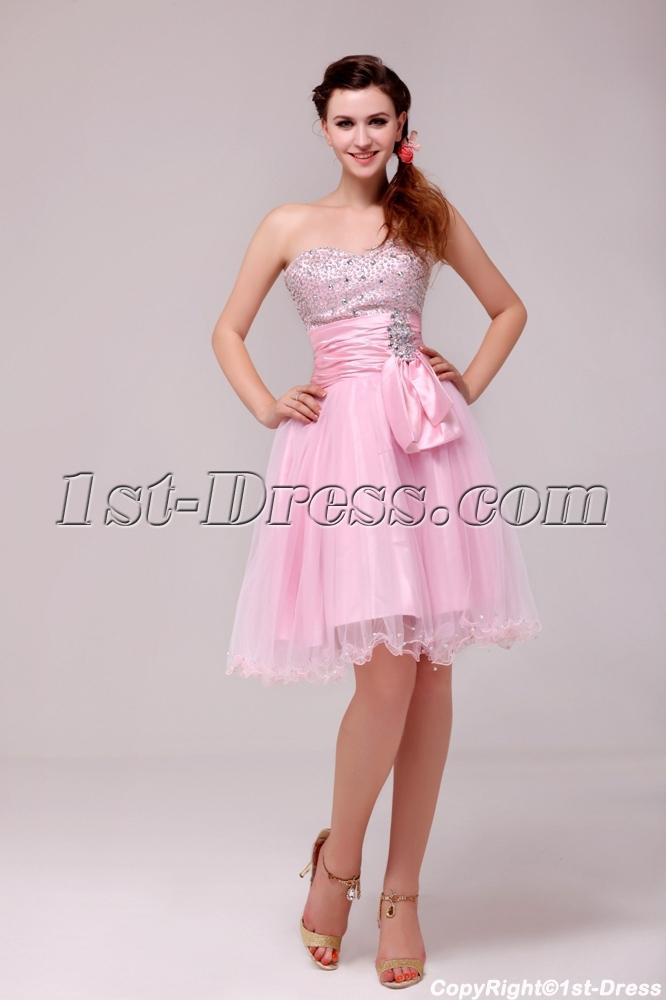 images/201312/big/Beaded-Pink-Cocktail-Dresses-Knee-Length-3845-b-1-1387798051.jpg